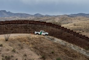 Eight Species at Risk of Extinction in Arizona Due to Trump's Border Wall Construction
