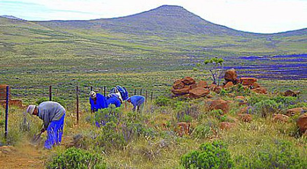 Labour Rights and Karoo Farmworkers: Can Power Relations Be Challenged?