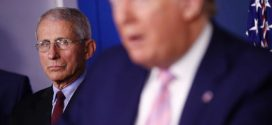 White House blocks Dr Anthony Fauci from testifying to Congress on coronavirus response
