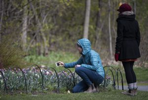 Park pictures are back as Ottawa officials reverse yet another COVID-19 rule