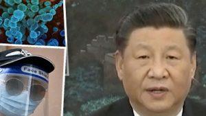 Chinese leader backs global virus probe