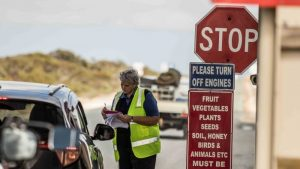 Should states ditch COVID-19 border restrictions? Even medical experts can't agree on that one