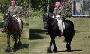 The Queen, 94, is seen in the saddle for first time since retreating to Windsor Castle 10 weeks ago