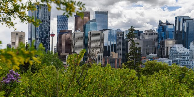West Calgary finding more success in COVID-19 fight than city's core, northeast