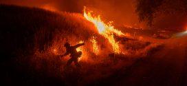 COVID-19 complicates an already dire wildfire season