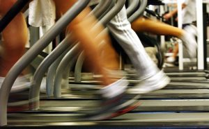Covid-19 lockdown: United Gyms takes govt to court in bid to get back on the treadmill   News24