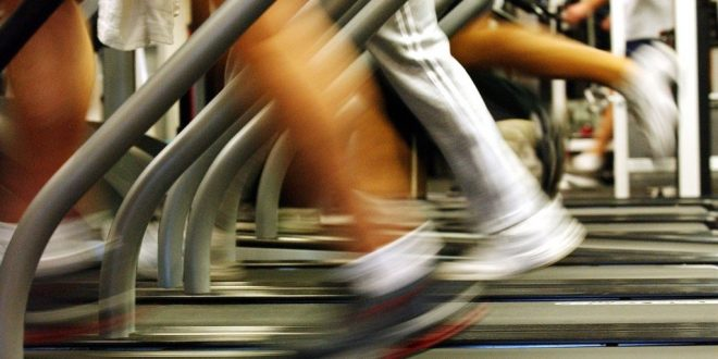 Covid-19 lockdown: United Gyms takes govt to court in bid to get back on the treadmill | News24