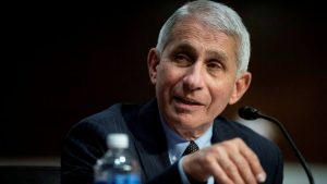 White House takes aim at Anthony Fauci over Covid-19 comments