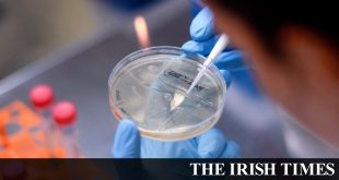 Covid-19: Ireland likely faces 'imminent second wave' due to reopening, experts warn