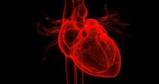 COVID-19 linked to heart damage in healthy people, small study suggests